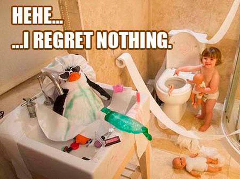 Desatascar el inodoro