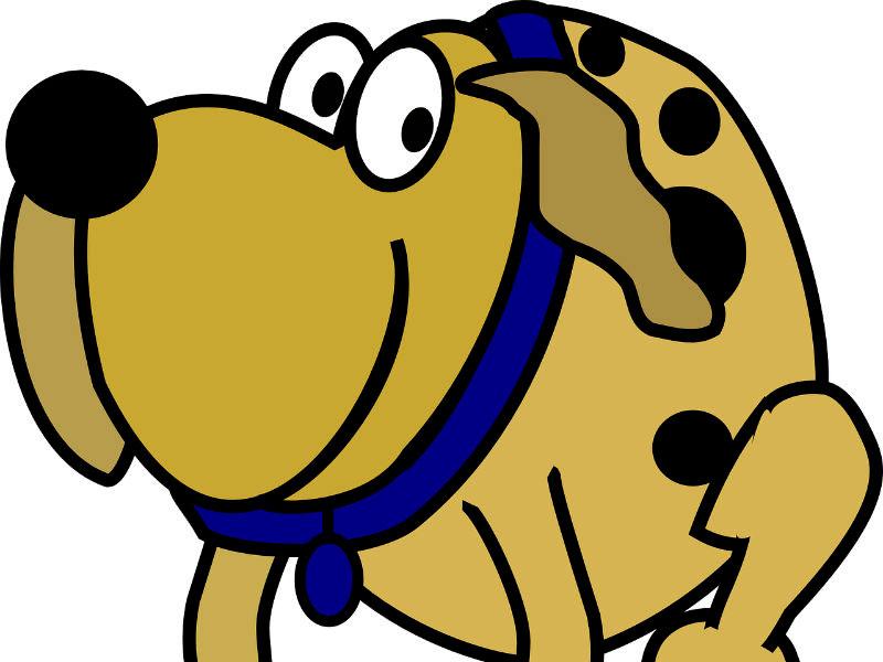 Problema de encía cubierta en perro