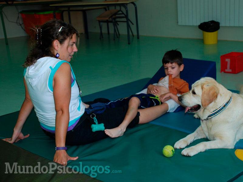 Terapia psicológica con animales, un fabuloso método